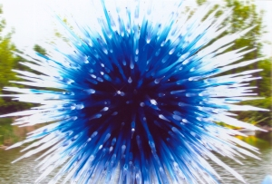 Be-Dazzled    Photo of Chihuly Sculpture by Helen Haskell remien