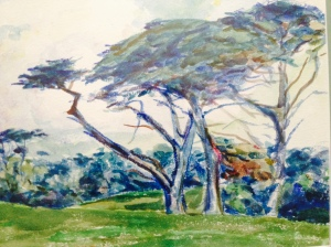 Watercolor of Cypress Trees: Monterey, California; Ernest Haskell