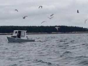 Fishing boat, Sebasco, Maine; July 2015