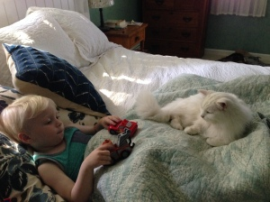 Viren relaxing with FuFu, Grandma and Grandpa's cat, July 2015