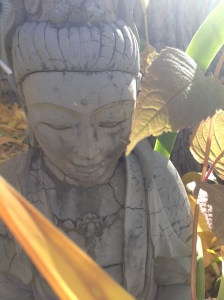 Garden Quan Yin: My own front yard, October 2015